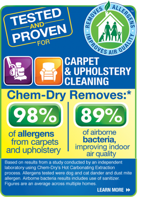 remove-allergens-carpets-uphlstery-rugs